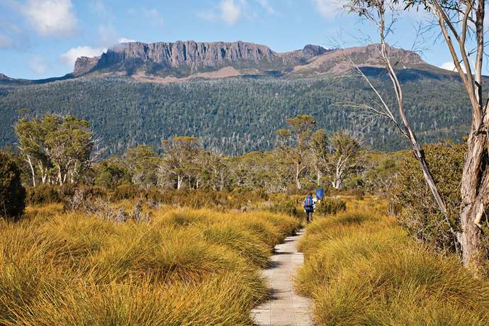 Top Tassie Travel Tips